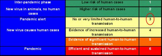 The WHO pandemic phases